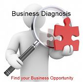 Business Diagnosis
